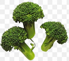 Broccoli Image - Broccoli Vegetable Cabbage PNG