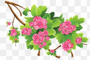 Spring Branch Transparent Clipart Picture - Spring Clip Art PNG