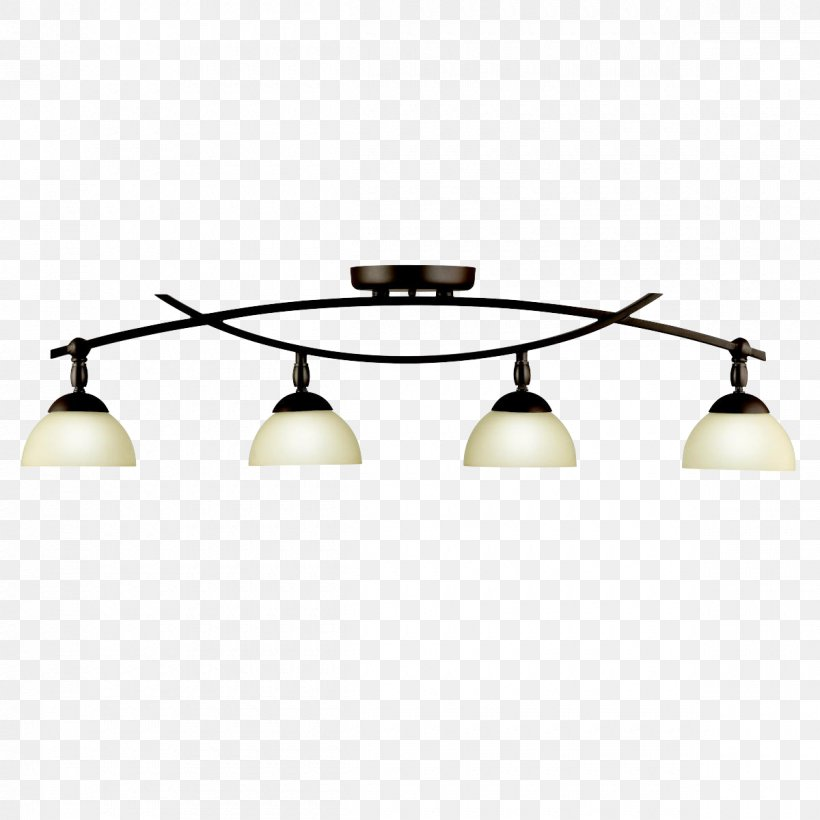 Track Lighting Fixtures Light Fixture