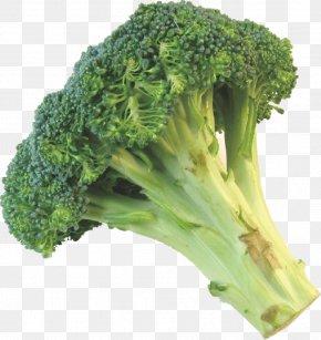 Broccoli - Broccoli Cauliflower Leftovers Vegetable PNG