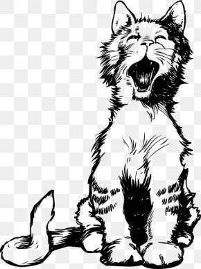 Cat,lovely,Kitty - Siamese Cat Persian Cat Kitten Meow Clip Art PNG