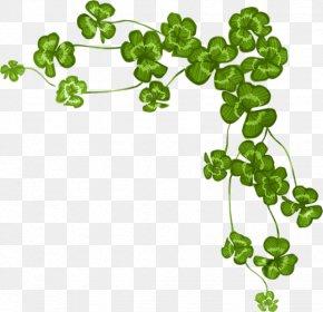 Clover - Four-leaf Clover Shamrock Saint Patrick's Day PNG