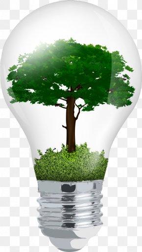 Vector Light Bulb In The Tree - Incandescent Light Bulb Euclidean Vector Tree PNG