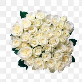 White Rose - Rose Flower Bouquet Clip Art PNG