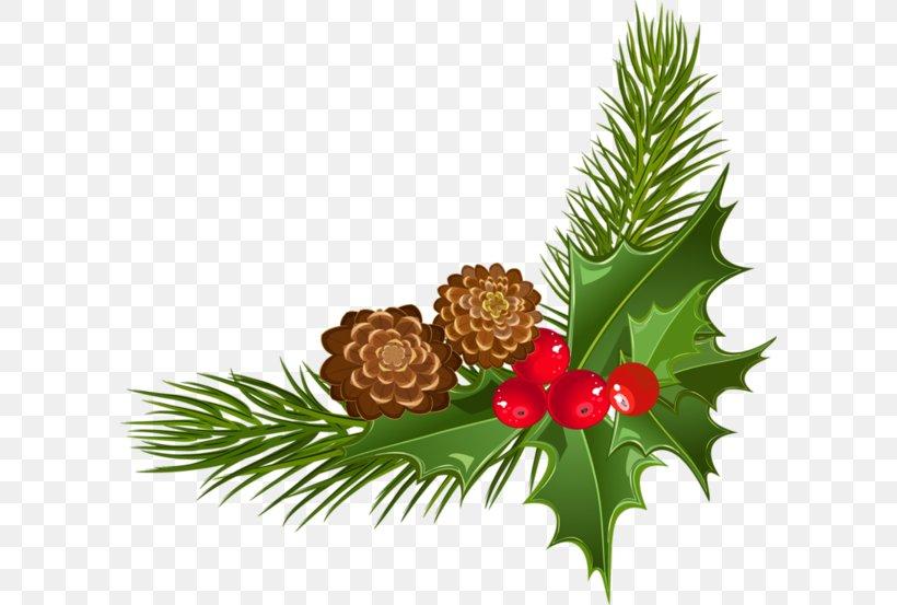 Christmas Day Santa Claus Christmas Ornament Christmas Card Christmas Decoration, PNG, 600x553px, Christmas Day, Aquifoliaceae, Branch, Carol, Christmas Download Free