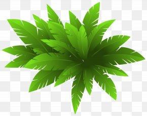Green Plant Decoration Clipart Image - Plant CorelDRAW Clip Art PNG