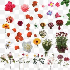 Poet - Floral Design 10 April Cut Flowers DeviantArt PNG