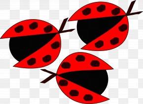 Ladybug - Teacher Clip Art PNG