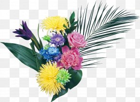 Desktop Wallpaper Iphone Flower Samsung Galaxy Y Png 954x1600px Iphone Animation Annual Plant Blanket Flowers Cut Flowers Download Free
