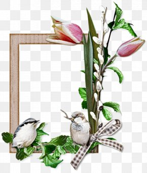 Arum Family Picture Frame - Background Flowers Frame PNG