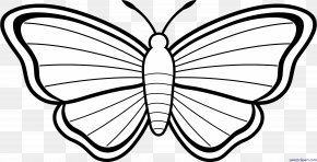 Butterfly - Monarch Butterfly Coloring Book Adult Drawing PNG