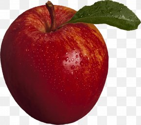 Red Apple Image - IPod Touch Apple Icon Image Format Icon PNG