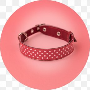 White Collar - Dog Collar Clothing Accessories Shopping PNG