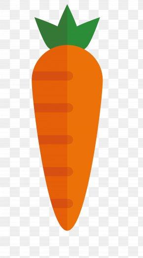 Vector Carrot - Euclidean Vector PNG