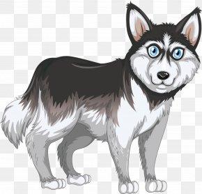 Neurotic Husky - Siberian Husky Royalty-free Euclidean Vector Illustration PNG