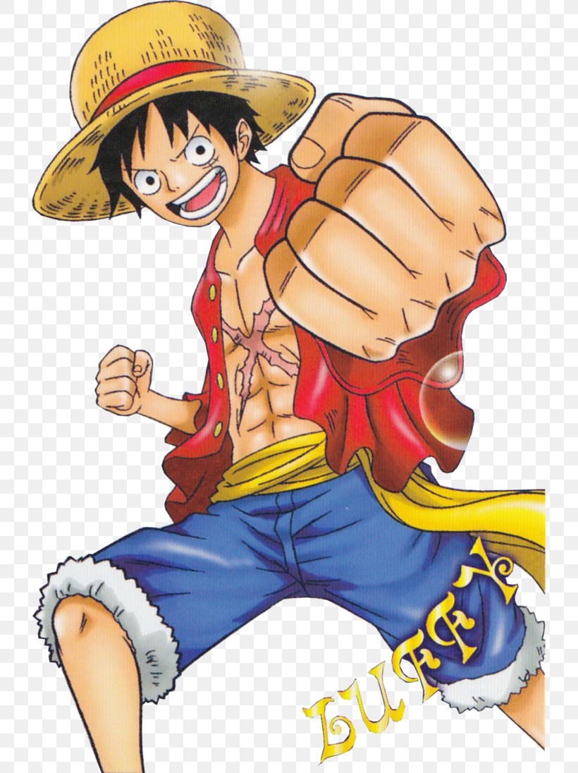 Monkey D Luffy Roronoa Zoro Vinsmoke Sanji Usopp One Piece Png 729x1096px Watercolor Cartoon Flower Frame