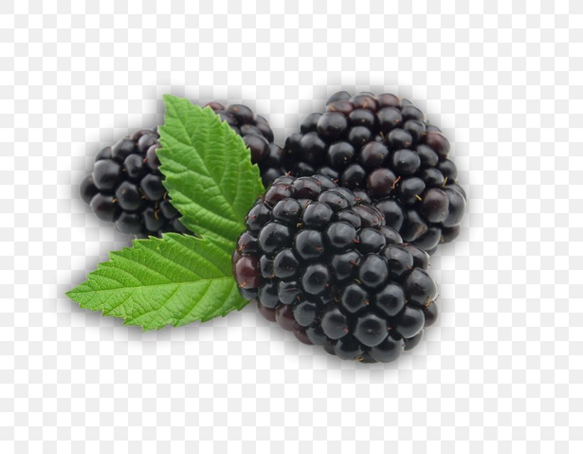 BlackBerry Fruit, PNG, 683x639px, Blackberry, Berry, Bilberry, Blueberry, Blueberry Tea Download Free