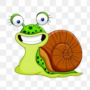Snails - Snail Stock Illustration Clip Art PNG