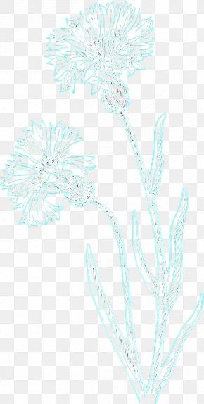 Wildflower Flower - Floral Flower Background PNG