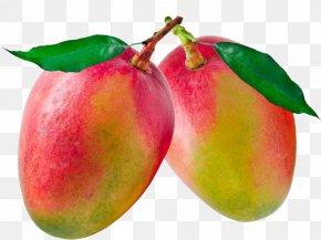 Mango - Stock Photography Clip Art PNG