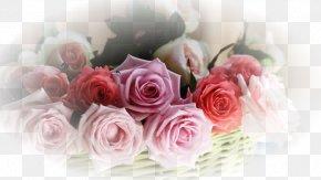 Flower - Flower Bouquet Desktop Wallpaper Garden Roses PNG