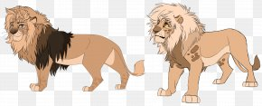 Lion - African Lion Roar Captivity Big Cat PNG