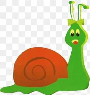 Sol - Land Snail Musical Theatre Gastropods Snail Mail PNG