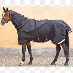 Rambo - Horse Mare Stallion Weight Pack Animal PNG