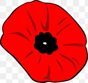 Poppy - Armistice Day Poppy Clip Art PNG