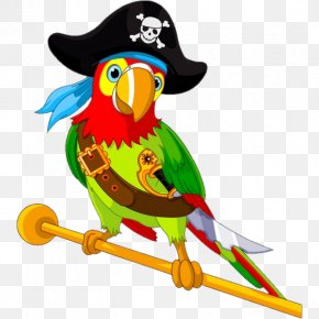 Parrot - Pirate Parrot Vector Graphics Illustration Clip Art PNG