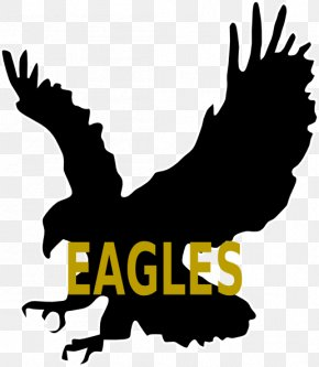 Bird - Bald Eagle Bird Silhouette Clip Art PNG