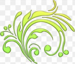 Leaf - Branch Leaf Ornamental Plant Clip Art PNG