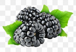 Blackberry Fruit Free Image - Blackberry Cobbler Fruit Blueberry PNG