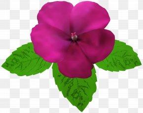 Magenta Flower Clip Art - Clip Art PNG