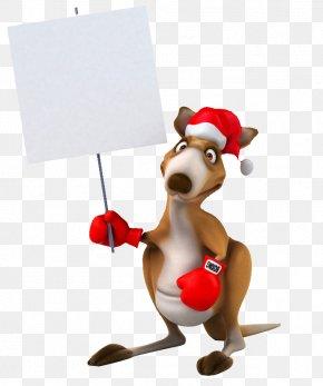 Kangaroo Placards - Australia Day Greeting Card Wish Wallpaper PNG