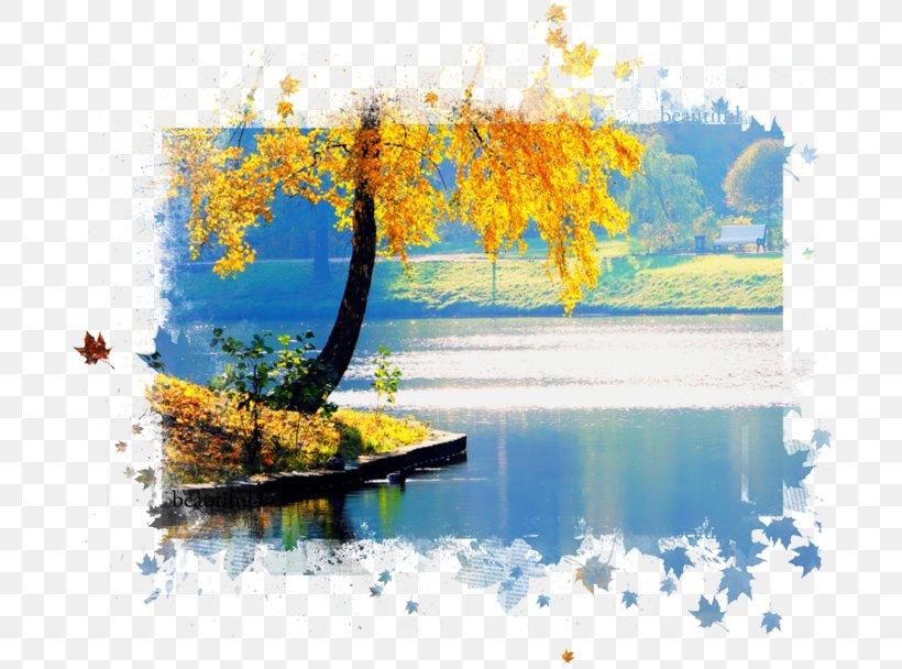 Autumn Desktop Wallpaper Color Png 699x608px Autumn Autumn