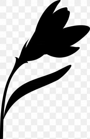 Leaf Clip Art Plant Stem Flower Silhouette PNG