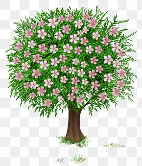 Transparent Spring Cliparts - Tree Spring Clip Art PNG
