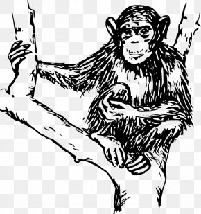 Hairy - Ape Chimpanzee Monkey Clip Art PNG