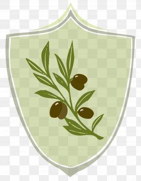 Olives - Coat Of Arms Symbol Olive PNG