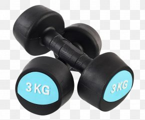 Fitness Dumbbells - Dumbbell Physical Fitness Exercise Equipment Physical Exercise PNG