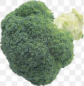Broccoli Image - Broccoli Slaw Cauliflower Cabbage PNG