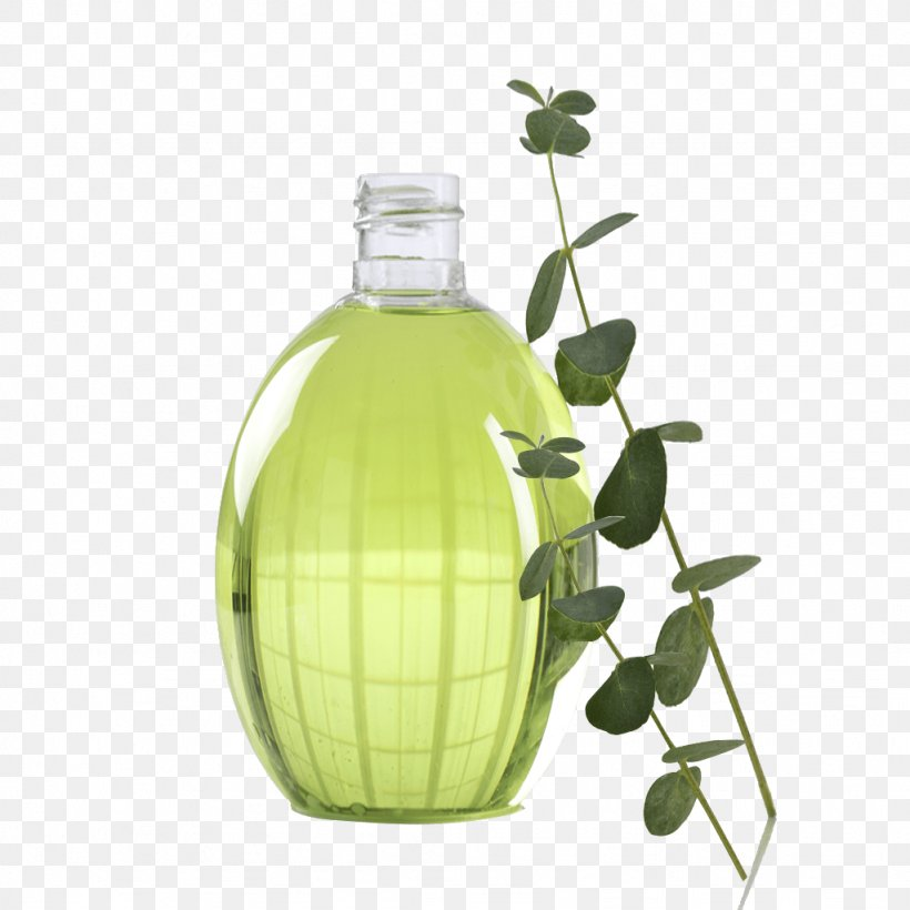 Glass Bottle Sodium Bicarbonate Liquid Water, PNG, 1024x1024px, Glass Bottle, Baking, Boil, Bottle, Glass Download Free