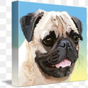 Pug Dog Breed Companion Dog Fine Art PNG