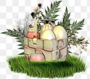 Pine Family Christmas Ornament - Christmas Ornament PNG