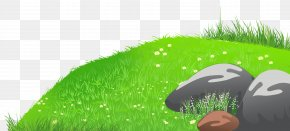 Grass With Stones And Daisies Clipart Picture - Clip Art PNG