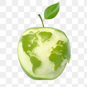 World Map Apple - United States Apple Cider World Fruit PNG