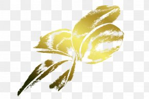 Plumeria - Insect Flower Petal Plant Stem Yellow PNG