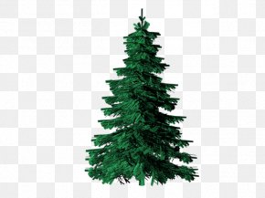 Evergreen Cliparts - Evergreen Tree Pine Clip Art PNG