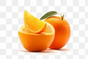 Fresh Oranges - Juice Orange Essential Oil Tangerine Peppermint PNG